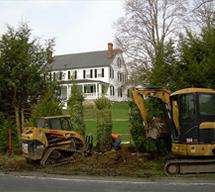 Bulldozers Planting Greenery